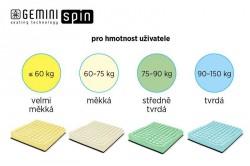 Gemini Spin