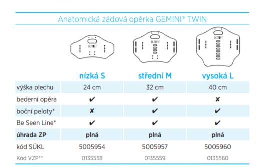 Gemini Twin